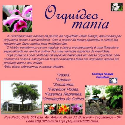 Orquídeomania